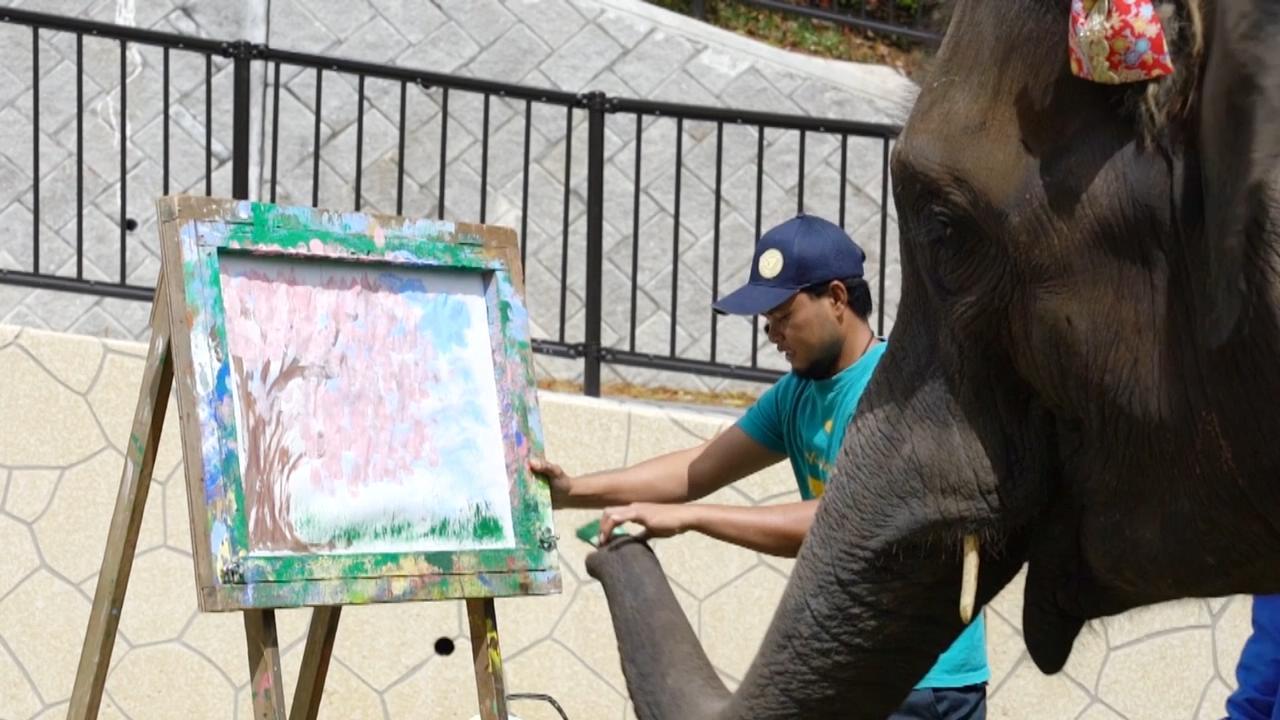 10岁小象画樱花树栩栩如生