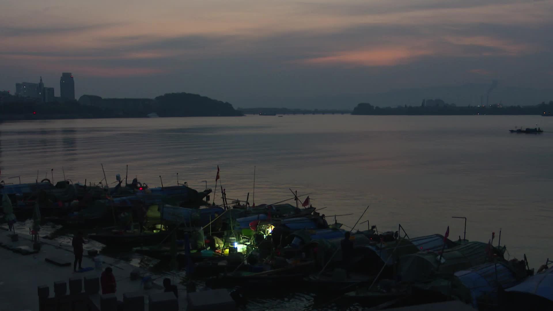杭州富阳市民赶早集买野生鲈鱼
