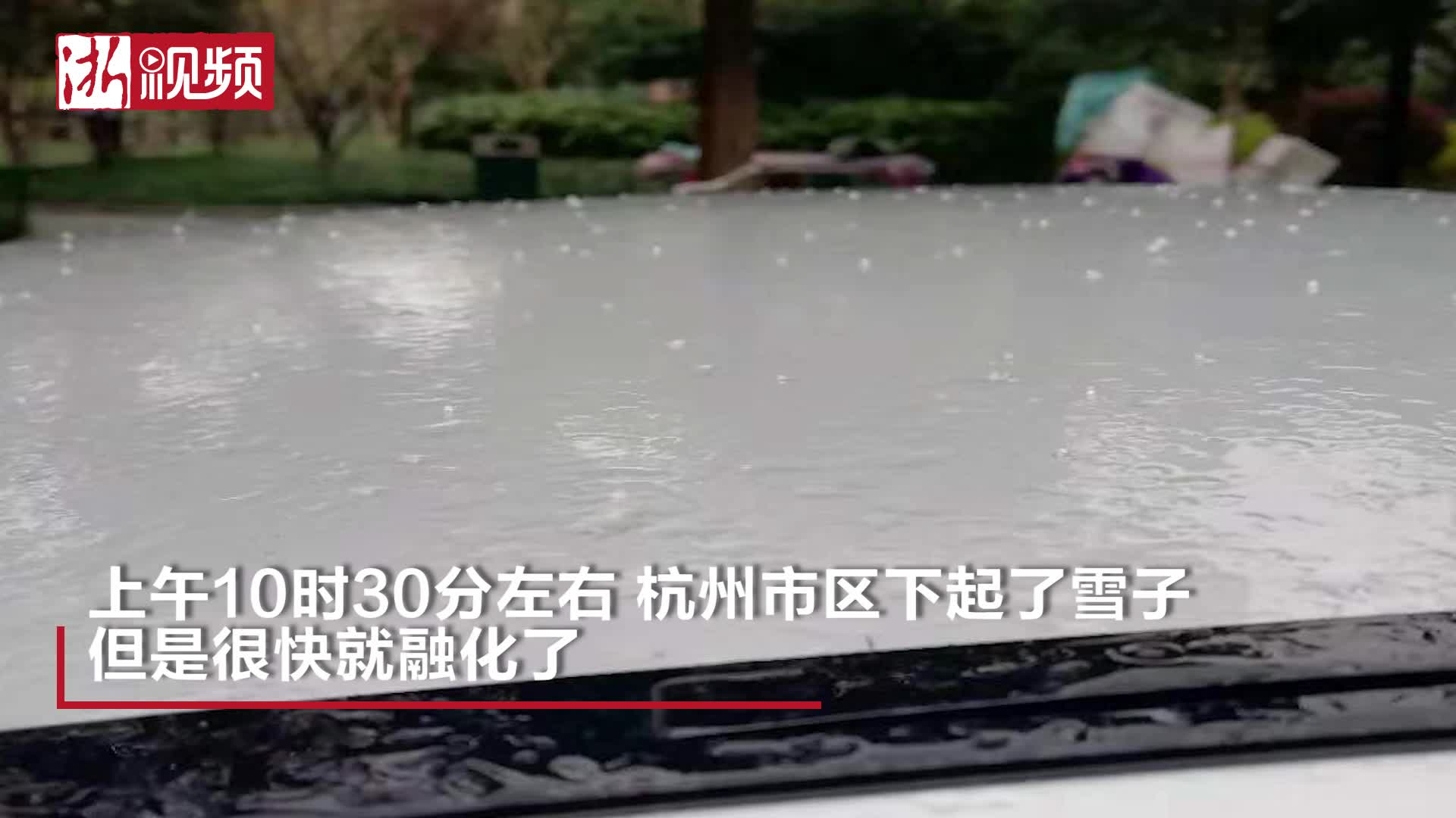 杭州市区下雪子啦