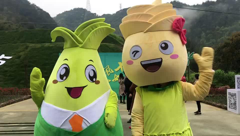 绍兴首届豌豆节唱响!动人开幕《我和我的春笋》祖国公考图片