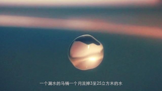 """手捧""""浙""""滴水"""