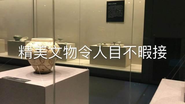 300余件珍品亮相宁波 讲述海丝故事重现千年海上贸易路
