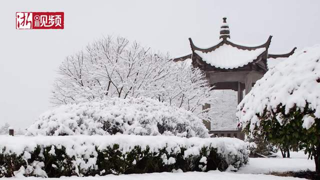 春节假期最后一天 宁波奉化大雪纷飞