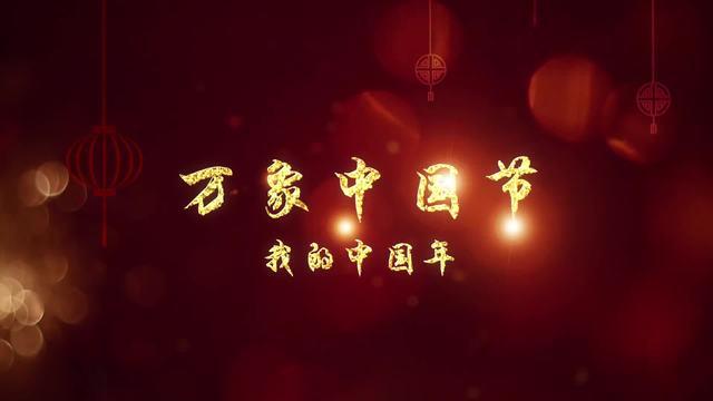 """""""我的中国年"""""""