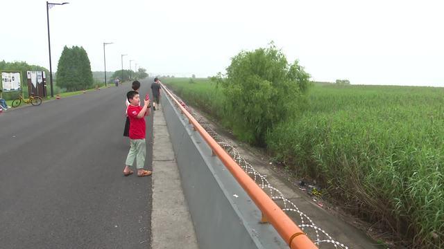 """杭州:这些""""躺""""在钱塘江边抛弃的共享单车大煞风景"""