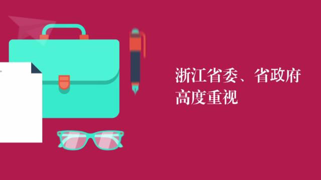 2017浙江省两会动画
