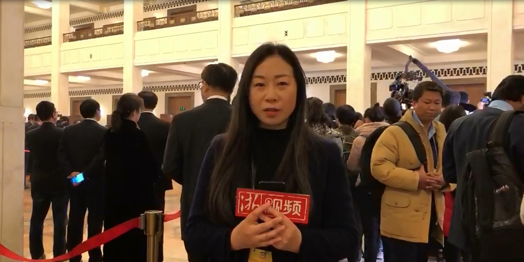 记者连线丨委员通道彰显开放自信