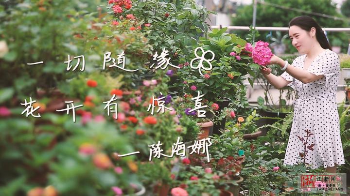 杭州姑娘把家建成花园:找男朋友不如养花