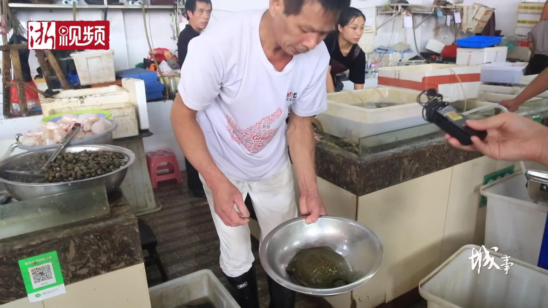 义乌大叔37年练就徒手称鱼绝技 一称一个准