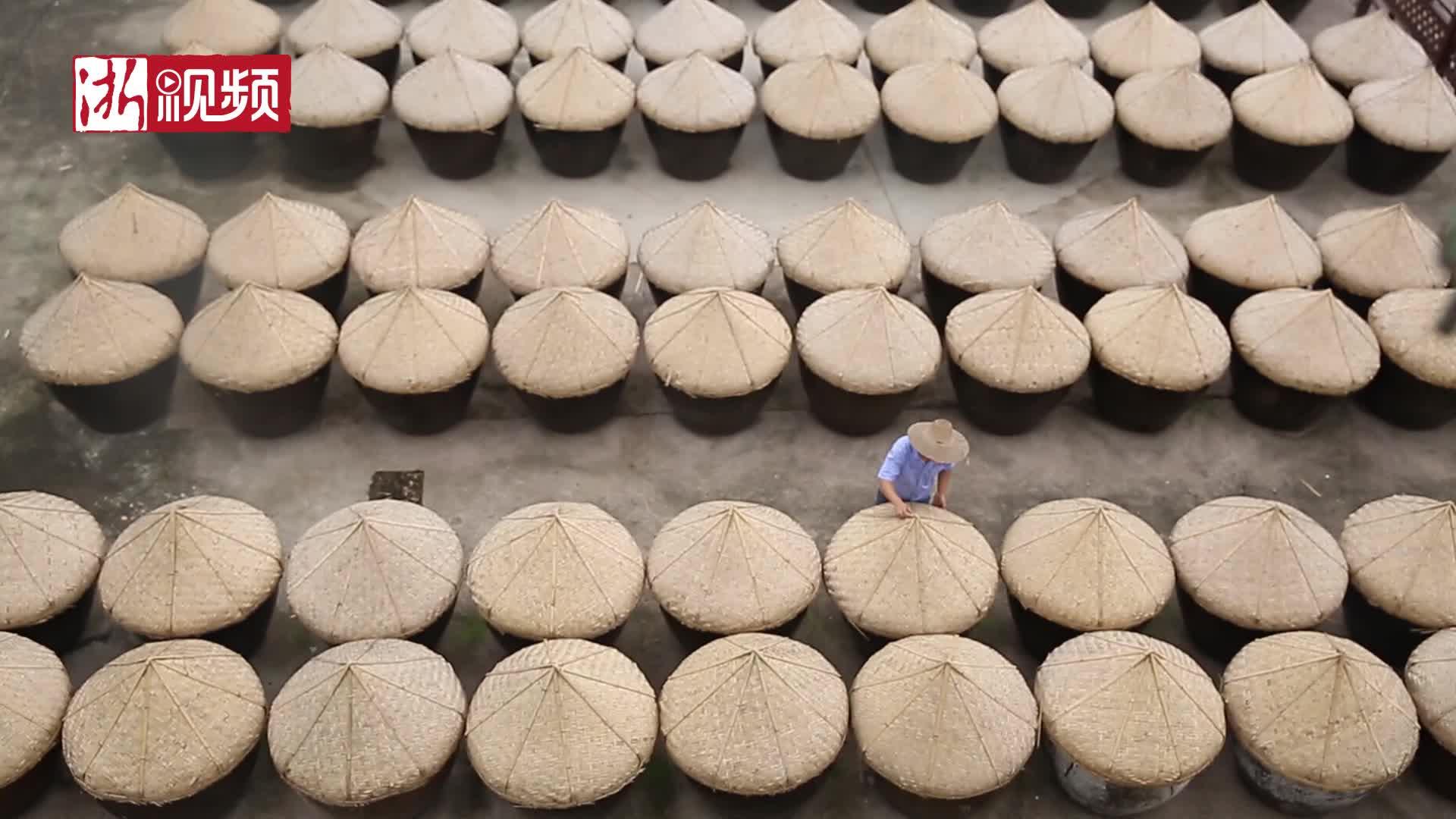 夏日忙晒酱 海盐匠人守护传统手工酿造技艺20年