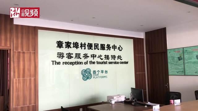 ZHANGZHEN章镇猕猴桃