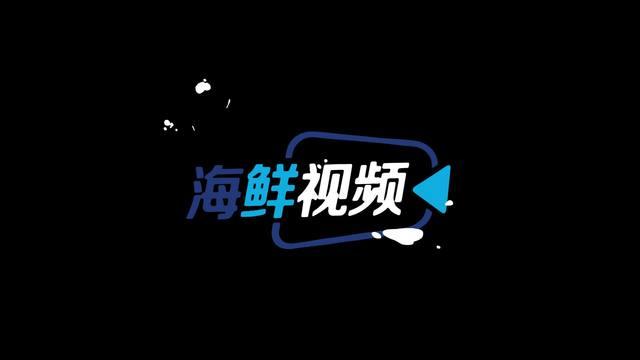 海鲜视频 | 245米海宁新坐标