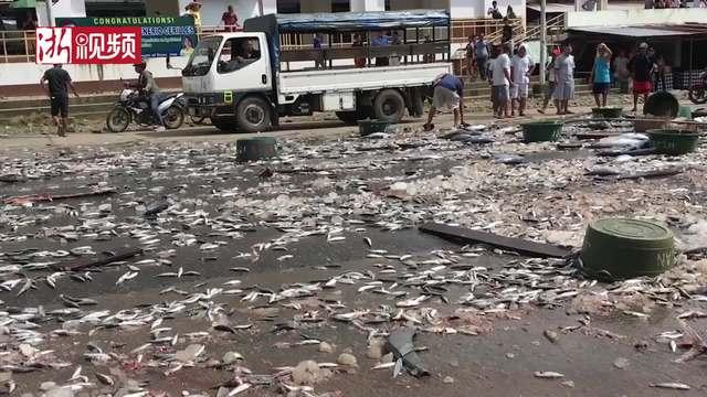 """菲律宾一辆卡车发生交通事故 成千上万条鱼""""流落街头""""引居民哄抢"""