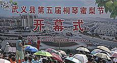 武义县第五届桐琴蜜梨节